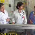 SEREMI DE SALUD INTENSIFICA FISCALIZACIÓN A HELADERÍAS