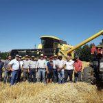 SEREMI DE AGRICULTURA INAUGURA TEMPORADA DE TRILLAS DE LA REGIÓN DE ÑUBLE