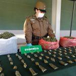 CARABINEROS DEL OS7 DESBARATA PUNTO DE VENTA DE DROGA EN CAMINO A LAS MARIPOSAS EN CHILLÁN