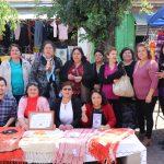 12 MUJERES DE SECTOR RURAL DE BULNES REFORZARON TRABAJO EN COMUNIDAD CON PROYECTO DE ARTESANÍA TEXTIL