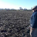 INDAP DESTINÓ 1.700 MILLONES AL PROGRAMA RECUPERACIÓN DE SUELOS EN LA REGIÓN DE ÑUBLE