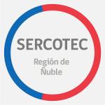 SERCOTEC ABRE CAPITAL SEMILLA DE MÁS DE $8 MIL MILLONES A NIVEL NACIONAL PARA TODOS LOS QUE BUSCAN EMPRENDER